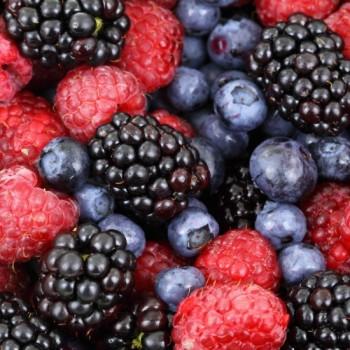 Mélange de Fruits des Bois