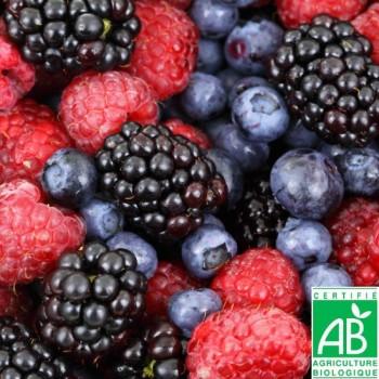 Mélange de Fruits des Bois Bio 450g