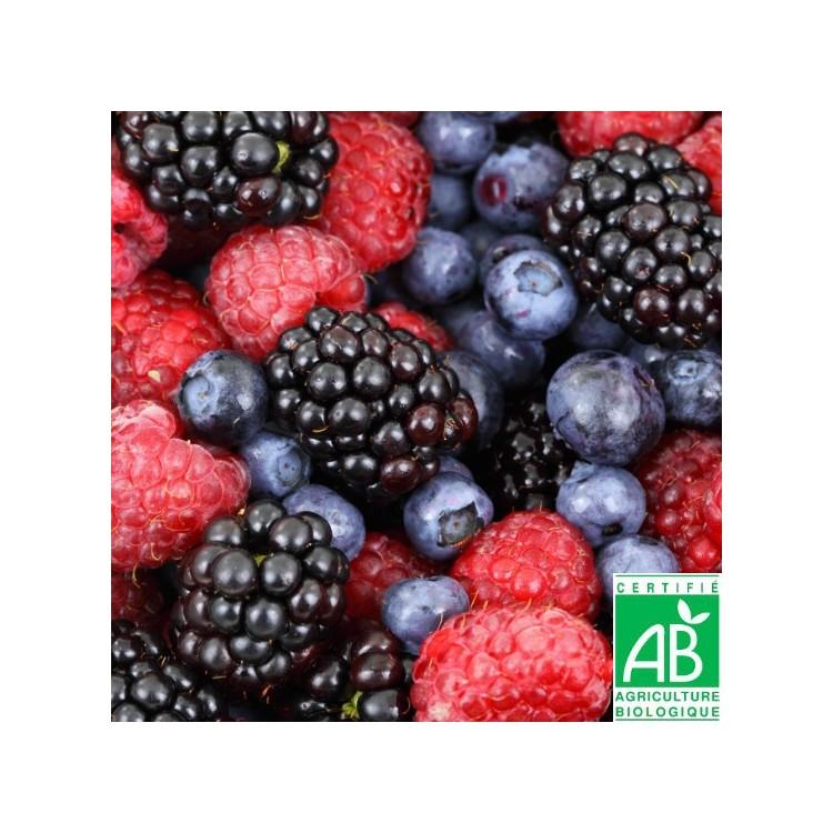 Mélange de Fruits des Bois Bio