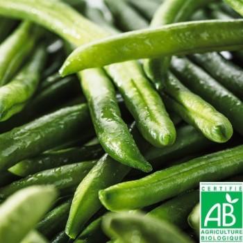 Haricots verts très fins Bio